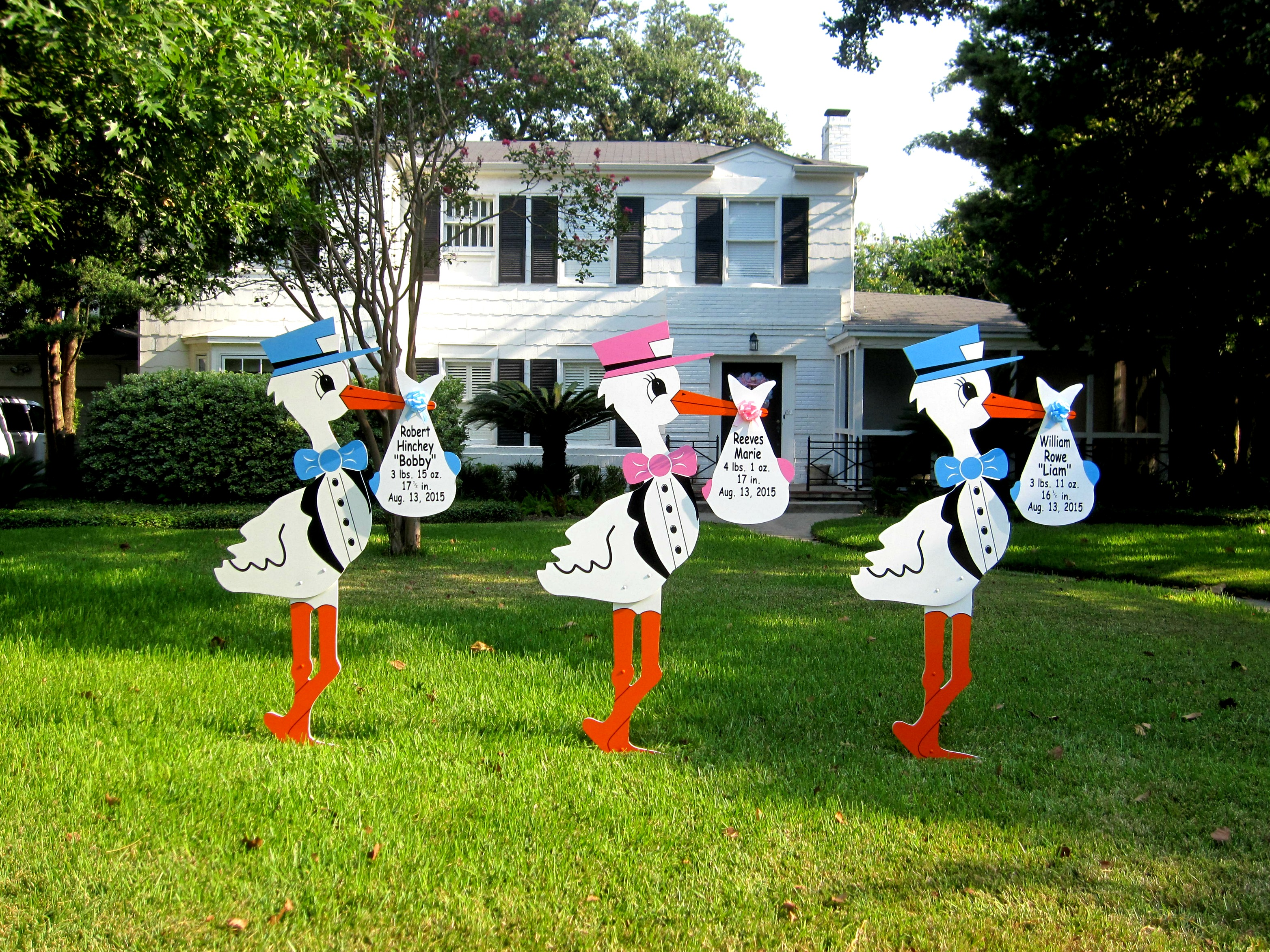 North Jersey Storks