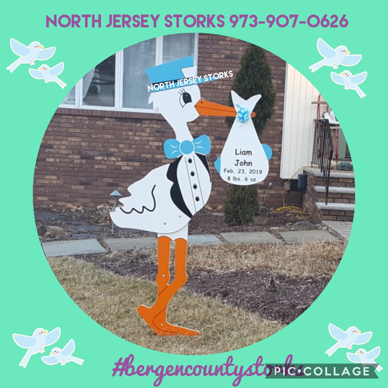 He S All Boy Stork Lawn Greetings North Haledon Nj